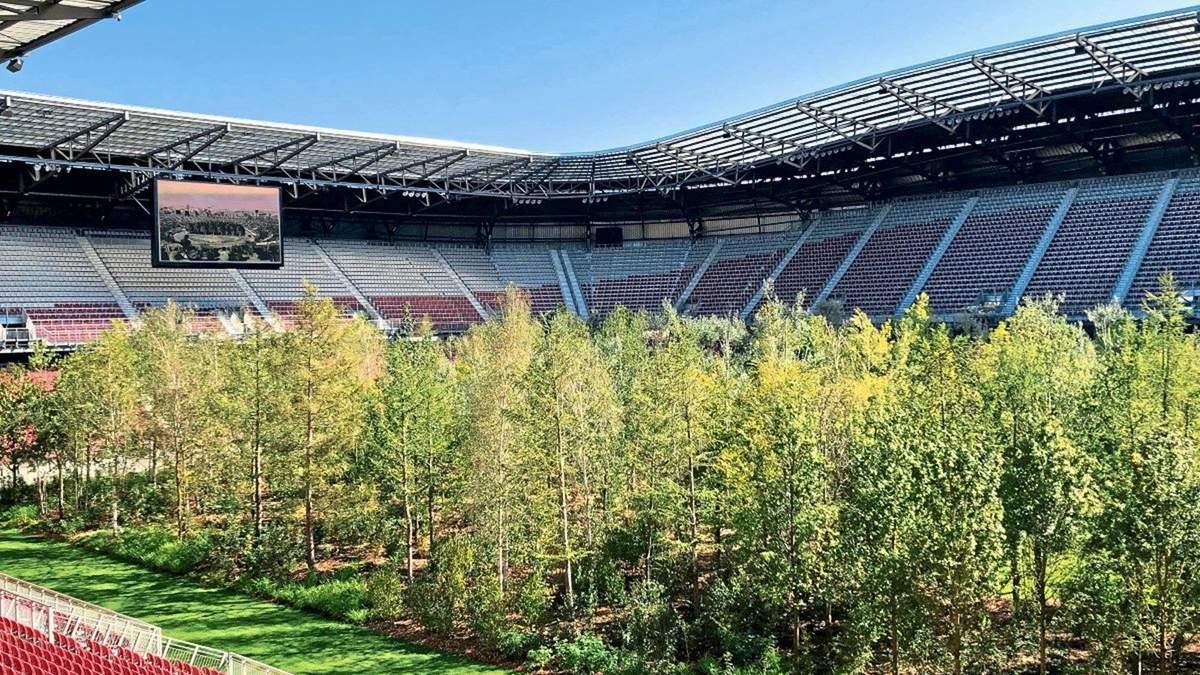 Ліс висадили на полі стадіону в Австрії