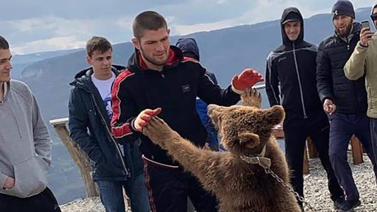 Хабіб б'ється з ведмедем