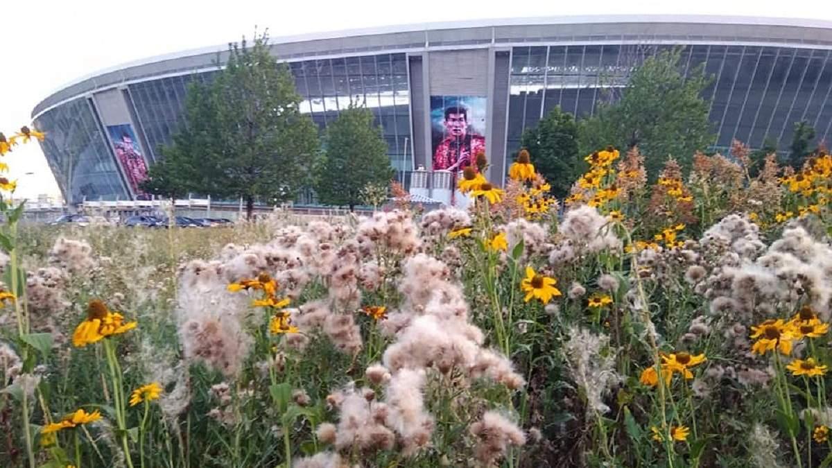Сорняки с человеческий рост: как выглядит арена, принимавшая исторические матчи Евро в Укрине