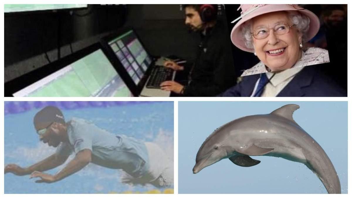 Дельфін Стерлінг: мережа вибухнула мемами після матчу Англії та Данії