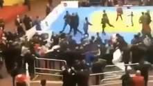 В России дзюдоисты и зрители устроили массовую драку: видео