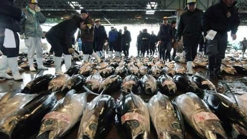 В Японии пробовали гигантского тунца за 736 тысяч долларов