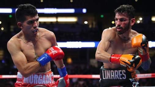 Колишній суперник Ломаченка ледь не виніс противника з рингу у четвертому раунді – відео